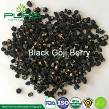 Wild Black Goji Berry med High Anthocyanin