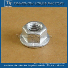 Heavy Structure Flange Nut