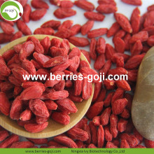 Goji Berry Konvensional Premium Premium Authentic Authentic High