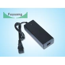 Cargador de batería 44V2A 12 Cells LifePO4 (FY4402000)