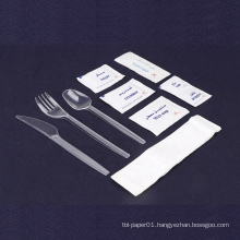 Professional eco friendly reusable clear PS plastic cutlery