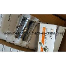 PMI Brand Linear Motion Bearing and Rail Msa15e Msa30e Msa35e Msa45e Msa55e Msa65e