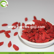 Factory Supply Variety Bulk Fruktprodukt Goji Berry