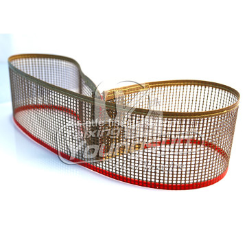 4x4 mm PTFE mesh belt conveyor