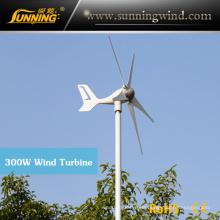 300W Mini Size Max Power Wind Power Electricity Generator