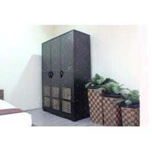 Cabinet en jacinthe à l'eau et armoire à l'armoire en bois