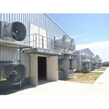 Maison préfabriquée de poulet de volaille de structure métallique d'Anti-Corrosion (KXD-CH1501)