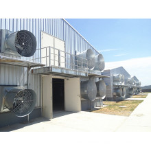 Anti-Corrosion Prefabricated Steel Structure Poultry Chicken House (KXD-CH1501)