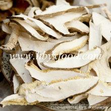 Hot Sales Dried Shiitake Mushroom Slices 1kgs in Vacuum Pack
