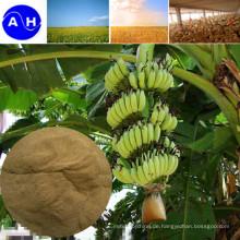 Aminosäure-Chelat-Spurenelement für den ökologischen Landbau