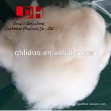 Baby Camel White Fibra de lã 19 Micron Carded Roving Spinnig