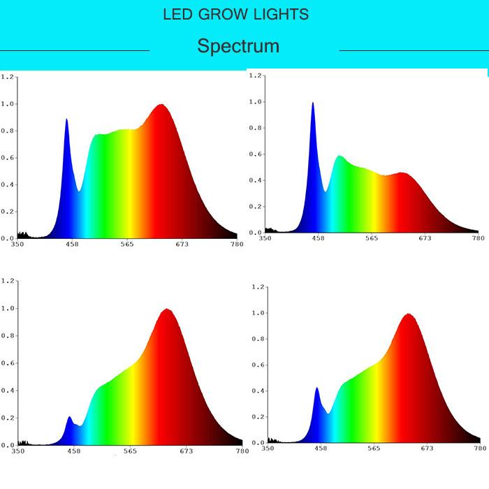 T8 LED Grow Light