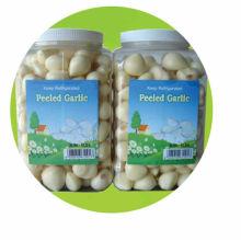 Fresh Peeled Garlic for America Market
