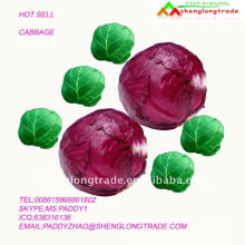 small FRESH cabbage 2011 for export