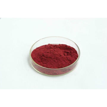 Bosbessenextract 25% Anthocyanine van fruit