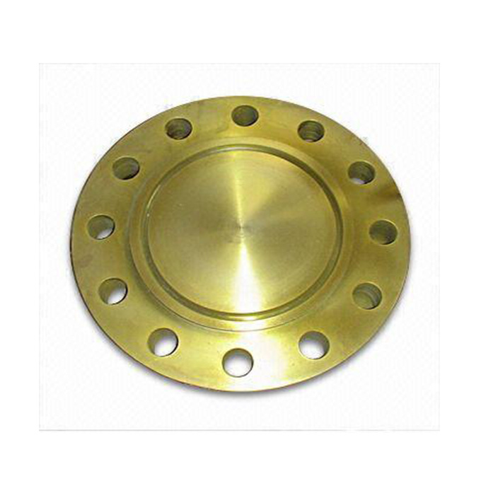 Ring-Type-Joint-Flange