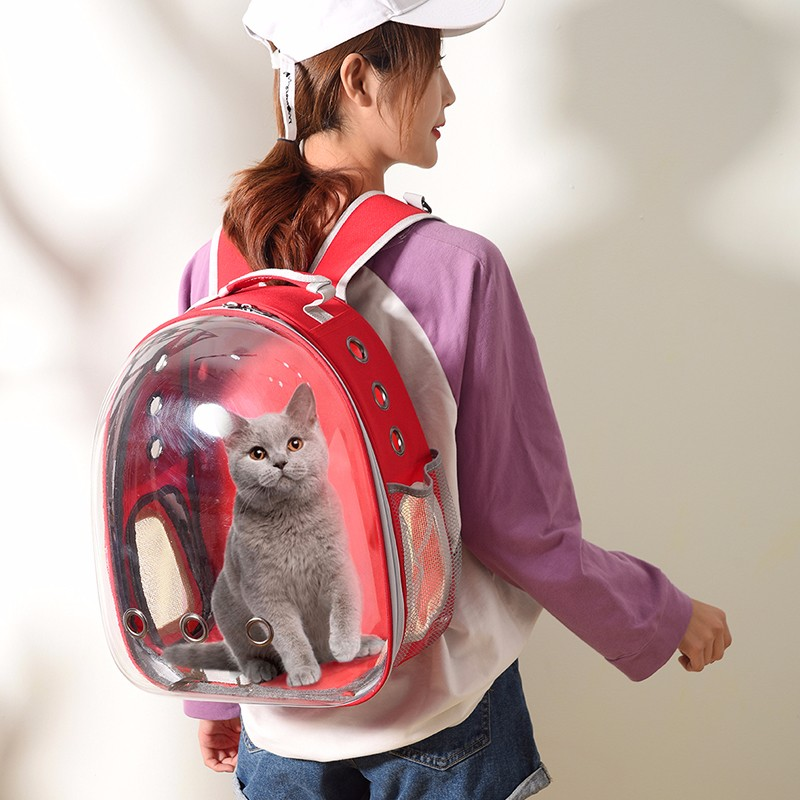 Pet Cat Travel Carrier