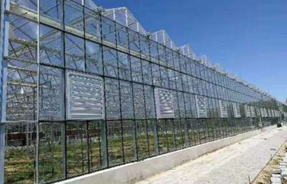 Galvanized Steel Greenhouse Frame