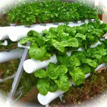 Sistema de jardinagem hidropônico vertical A-Frame
