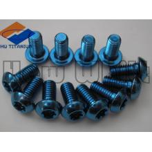 blue Gr5 Titanium torx screws