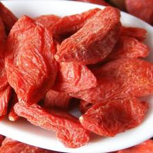Fresh Vitamin Goji Berry EU certified