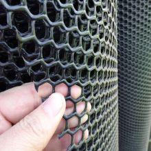 Forme plate de trou hexagonal en plastique à vendre