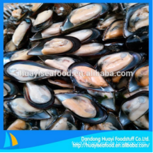 tasty frozen wholesale plenty of half shell mussel fast delivery