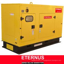 Générateur multi-usages Diesel ISO9001 Ce (BU30KS)