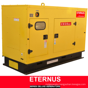 Multi-Purpose Generator Diesel ISO9001 Ce (BU30KS)