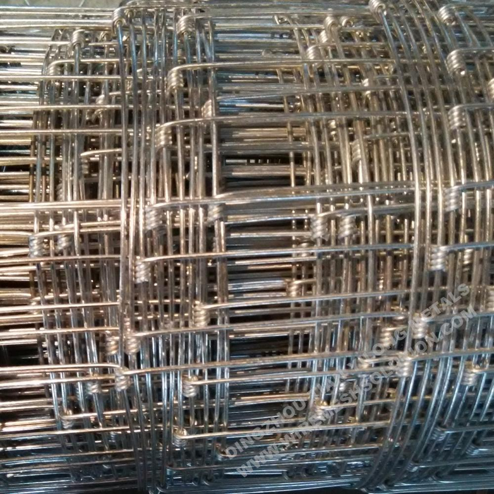 Poultry Galvanized Cattle Farm Fence