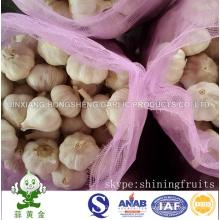 Alho Branco Normal Fresh New Crop 10kgs Mesh Bag Embalagem