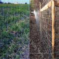 Hot sale! Deer fence/Galvanized Wire Mesh Deer Fence supplier