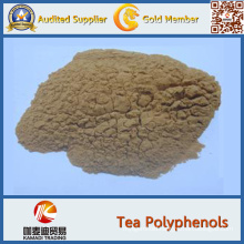 Best Price Natural Green Tea Extract Green Tea Polyphenols