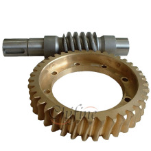 High Quality Worm Gear for Sale