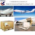 Экспедитора воздушных Грузовое судно перевозок из Китая в мире