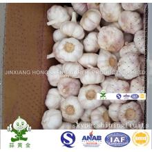 Normal Alho Branco Novo Crop 6,0cm 10kgs Carton