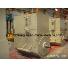 3150V-10500V High-Voltage Brushless Synchronous Alternator