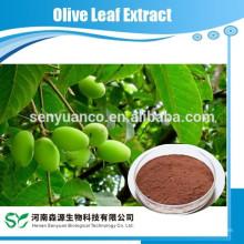 Extrait de feuille d'olive