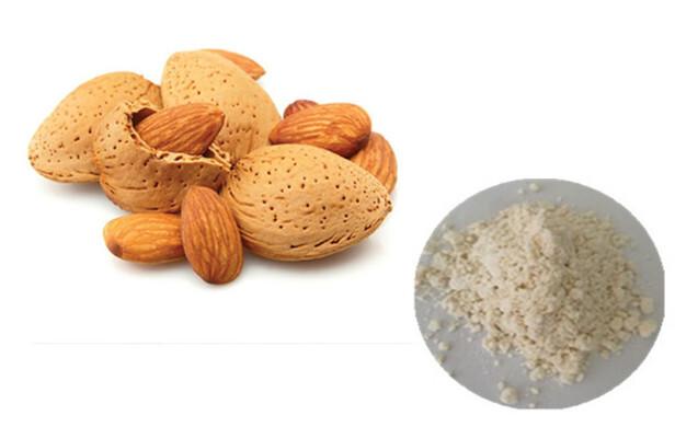 Almond Extract Powder