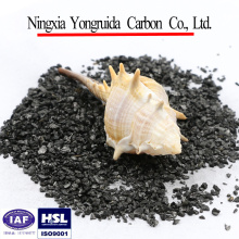 Bulk granular coal based activated carbon for polluted river