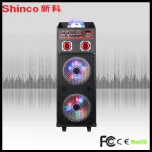 PA Subwoofer Sub Bass PRO Audio Lautsprecher für Leistung