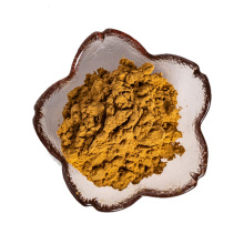 factory supply angelica root extract powder 10:1 for women's health care