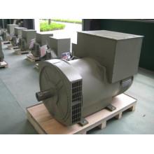 Бесщеточный трехфазный генератор переменного тока с двойным подшипником