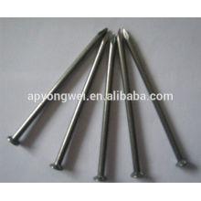 YW--Iron nails/polished common iron nails