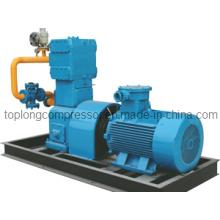 Compressor do GNC Compressor do GLP Compressor do LNG Compressor do nitrogênio (Zw-0.8 / 10-16)