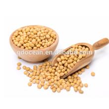 Grão de soja de alta qualidade para óleo, soja, sementes de soja com preço razoável e entrega rápida na venda quente !!