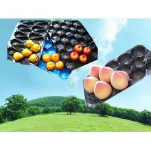 39X59cm Fresh Produce Packaging Tray
