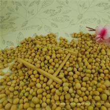 Sojabohnen Sojabohnen mit hohem Proteingehalt