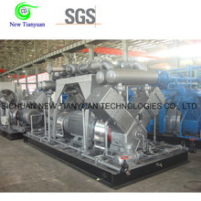 China Supplier Piston Reciprocating Industrial Gas Compressor