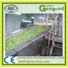 Green Beans Fluidized Máquina de congelação rápida